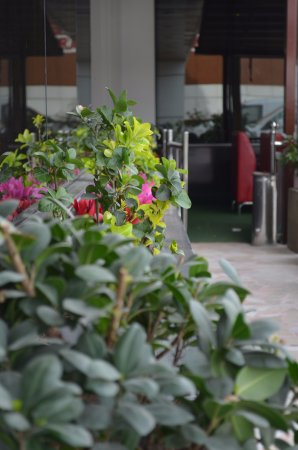 Le Grand Hotel Prices Reviews Adana Turkey Tripadvisor