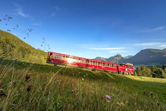 夏夫堡登山火車