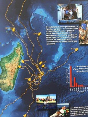 Saint-Leu, Reunion Island: photo6.jpg