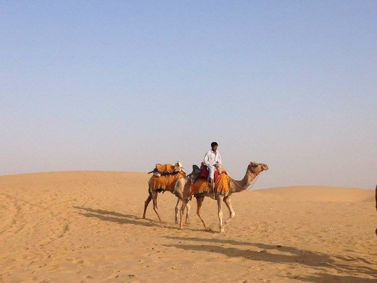 Backpacker Desert Tours