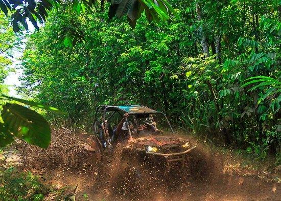 For fun; take a jeep tour in Palau.