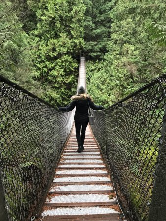 노스 밴쿠버 사진