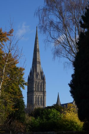 Salisbury Cathedral and Magna Carta: The cathedral from Elizabeth Gardens