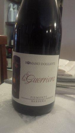 Province of Cuneo, Italia: vino