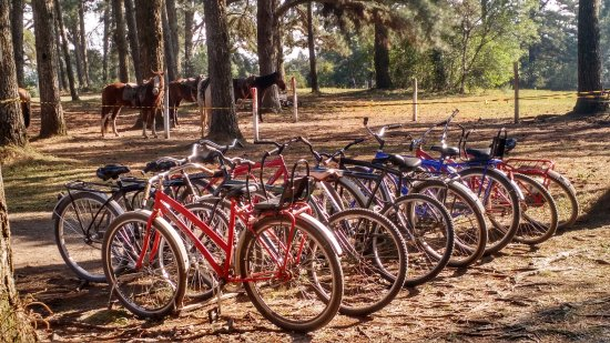 Sao Luiz do Puruna, PR: como opções de laser: cavalgadas, bicicletas, pescaria, banhos em piscina natural e convencional