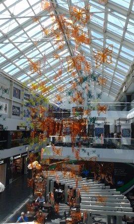 Factory Decorazione Fox Mendrisio Town Of Picture Stores w1IZ1qv