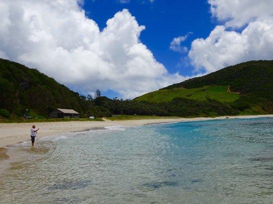 Ned's Beach : photo2.jpg