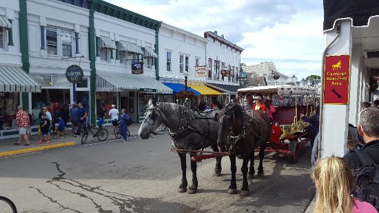 Tripadvisor Mackinac Island Carriage Tours