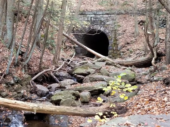 Seven Tubs Natural Area : November 2017