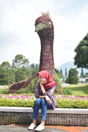 Cianjur, Indonésie : photo0.jpg