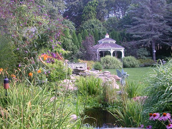 The Villa: Garden with Koi pond