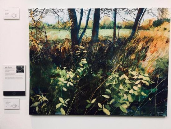 Truro, UK: Lucy Davies at Atrium Gallery