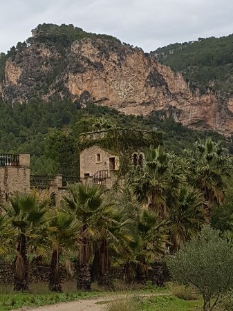 Puigpunyent, Spanien: 20171113_132847_large.jpg