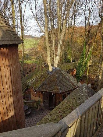 The Alnwick Garden: 20171109_140018_large.jpg