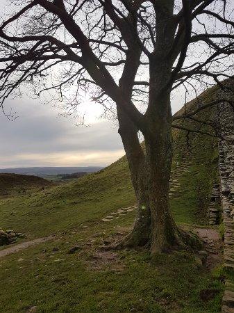Bardon Mill, UK: 20171108_133238_large.jpg