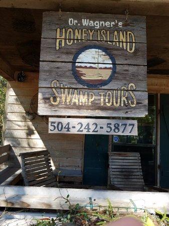 Dr. Wagner's Honey Island Swamp Tours: 20171116_111043_large.jpg