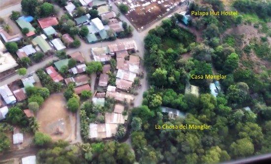 La Chosa del Manglar Nature Resort: We are all of the green!!