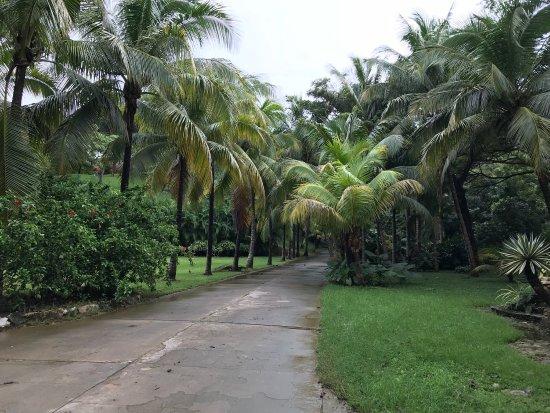 Gumbalimba Park: photo2.jpg