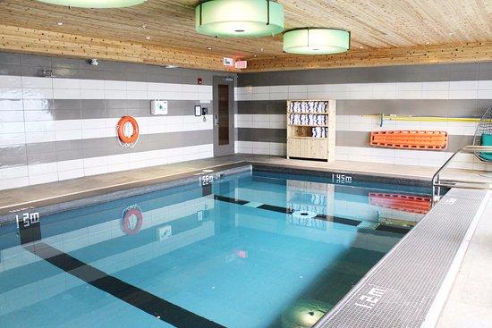 Oakville, Canadá: Indoor Pool
