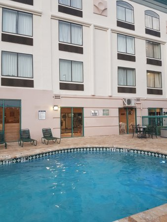 Wingate by Wyndham Tampa/At USF : Pool (unheated)