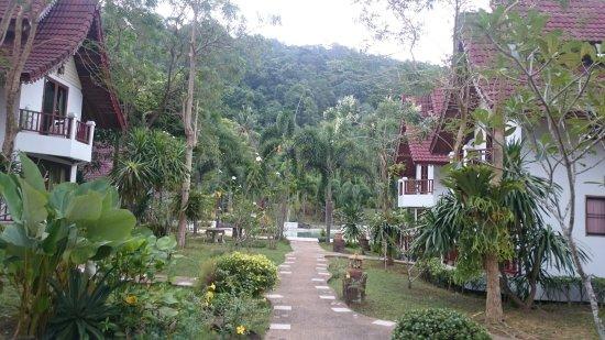 Thai Garden Hill Resort, Koh Chang : DSC_0778_large.jpg