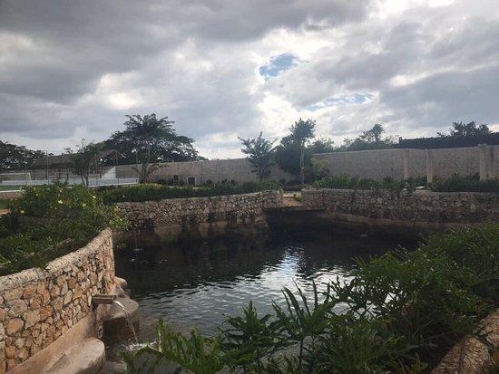 Hacienda Santa Cruz: photo1.jpg