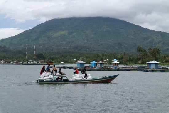 Krui, Indonesia: 20171116134138_IMG_6420_large.jpg