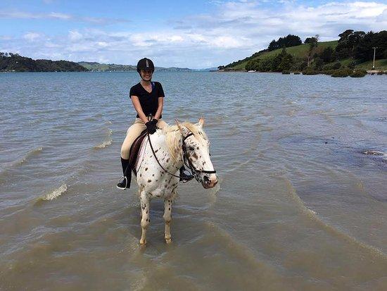 Isla Waiheke, Nueva Zelanda: In the water at Te Matuku with Apache