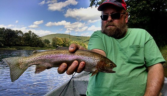 Narrowsburg, NY: Wild Upper Delware River rainbows! They fight like salmon and make your reel scream! Tight lines