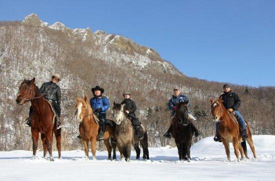 札幌乗馬体験ツアー