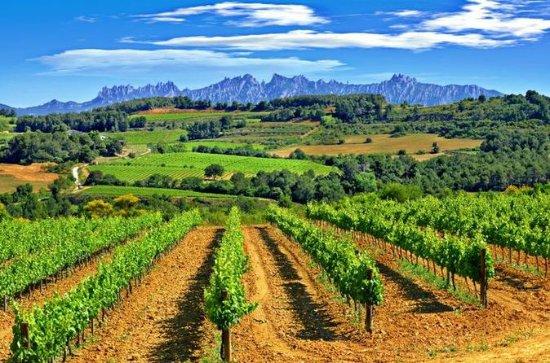 Excursión a Montserrat y Penedès para...