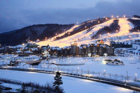 Traslado en autobús desde Seúl a Yongpyong o Alpensia Resort en...