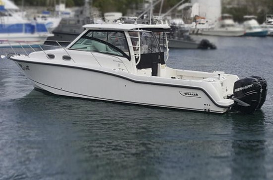 33 Ft, Boston Whaler