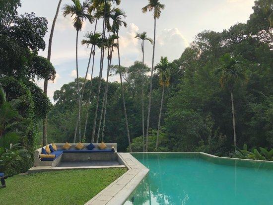The Kandy House: photo4.jpg
