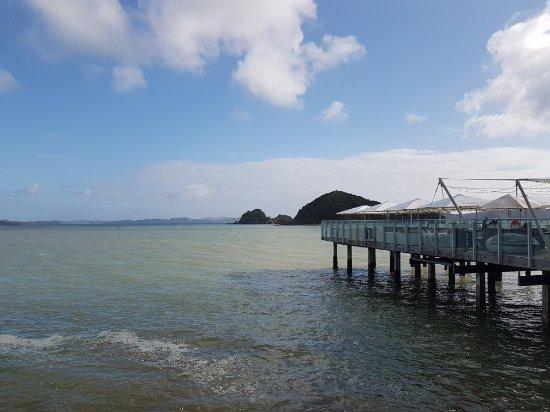 Paihia, New Zealand: 20171101_084112_large.jpg