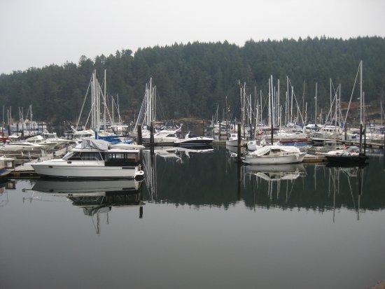 Duncan, Kanada: Maple Bay marina.