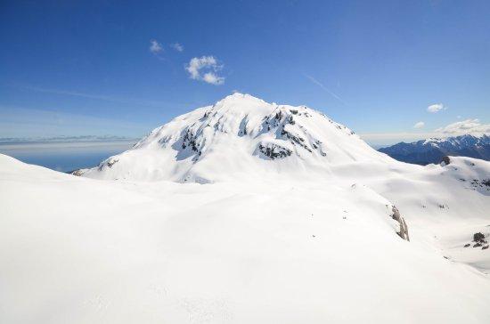 Fox Glacier, Nova Zelândia: photo4.jpg
