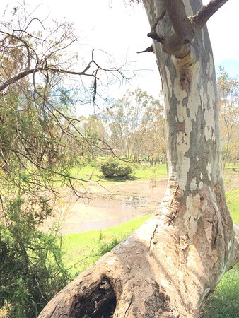 Cavendish, Australia: Settlers Walk
