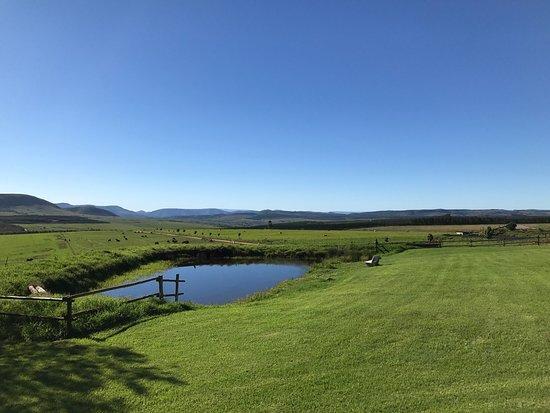 Piet Retief, Южная Африка: photo5.jpg