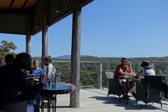 Bermagui, Australia: View