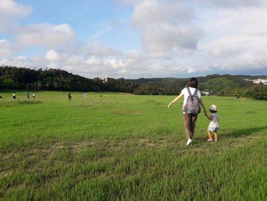 新竹 Picture