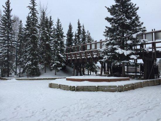 Pioneer Park: Pioneer Park in November