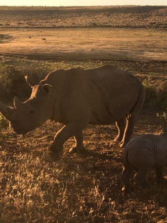 Albertina, Sydafrika: photo4.jpg