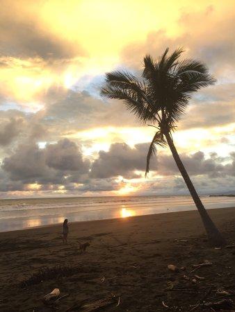 Torio, Panama: photo0.jpg