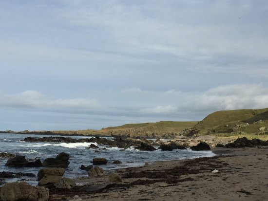 Campbeltown, UK: A beach near Machrihanish, a favourite walk within easy reach of Oatfield.