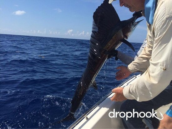 Little Torch Key, FL: #deepseafishing #floridakeysfishing #reeffishingcharters #keywestfishingguides