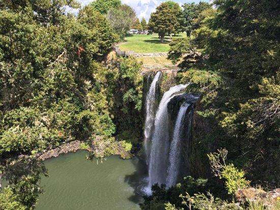 Whangarei Falls: photo1.jpg
