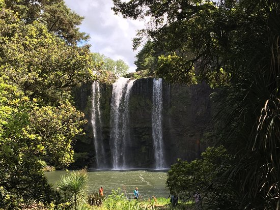 Whangarei Falls: photo2.jpg