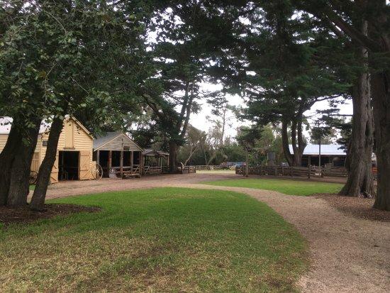Остров Филлип, Австралия: 멋진 풍경
