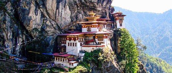 Bhutan Dendrobium Tour & Trek